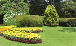 Flores do jardim com árvores Fotos de Stock Royalty Free