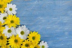 Flores do jardim sobre o fundo de madeira pintado da tabela contexto com espaço da cópia Flores bonitas no fundo de madeira Fotos de Stock