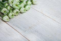 Flores do jardim sobre o fundo de madeira pintado da tabela contexto com espaço da cópia Flores bonitas no fundo de madeira Foto de Stock