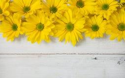 Flores do jardim sobre o fundo de madeira pintado da tabela contexto com espaço da cópia Flores bonitas no fundo de madeira Fotografia de Stock
