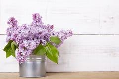 Flores do Lilac Imagens de Stock