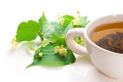 Flores do Linden e chá verde. Fotografia de Stock