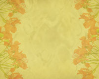 Flores do pavão na árvore Foto de Stock