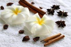 Flores do plumeria com as estrelas de varas do anis e de canela no fundo branco Imagens de Stock