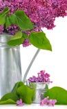 Flores do potenciômetro do lilás e do metal Imagens de Stock Royalty Free