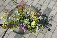 Flores do prado Imagem de Stock