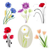 Flores do prado ajustadas ilustração do vetor