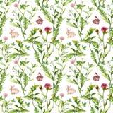 Flores do prado, coelhos minúsculos Teste padrão sem emenda watercolor Fotos de Stock Royalty Free