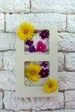 Flores do quadro e do verão da foto no interior contra uma parede branca do kerpich, fotos de stock