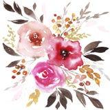 Flores do sum?rio da aquarela da mola ilustração royalty free