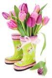 Flores do tulip da mola nos carregadores
