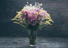 Flores do verão no vidro Imagem de Stock