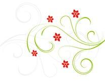 Flores do vermelho da elegância ilustração do vetor