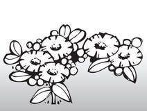 Flores do vetor Imagem de Stock Royalty Free