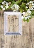 Flores do Viburnum e quadro de madeira em um fundo de madeira para o engodo Fotos de Stock