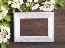 Flores do Viburnum e quadro de madeira em um fundo de madeira para o engodo Imagem de Stock