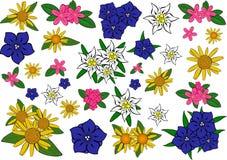 Flores dos alpes. ilustração royalty free