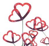 Flores dos corações Foto de Stock Royalty Free