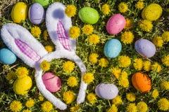 Flores dos dentes-de-leão com ovos da páscoa Imagem de Stock Royalty Free