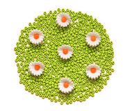Flores dos grânulos Fotos de Stock