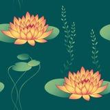 Flores dos lótus ilustração stock