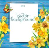 Flores dos narcisos amarelos no fundo de madeira ilustração do vetor