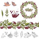 Flores dos objetos isoladas no fundo branco ilustração royalty free