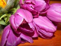 Flores dos pêsames Fotografia de Stock