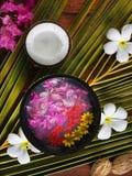 Flores dos termas Foto de Stock Royalty Free