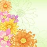 Flores drenadas mano del vector con el fondo verde Fotografía de archivo