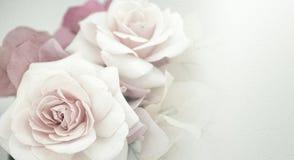 Flores dulces en estilo del color del vintage en textura del papel de la mora Imágenes de archivo libres de regalías