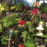 Flores e água da arte Fotografia de Stock