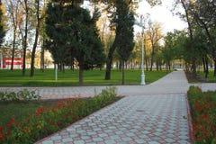 Flores e árvores bonitas no parque imagem de stock