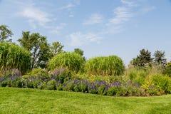 Flores e árvores no monte ajardinado do jardim Fotografia de Stock Royalty Free