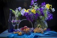 Flores e abricós da mola Imagem de Stock