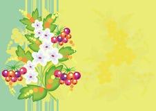 Flores e bagas abstratas com fundo Fotos de Stock