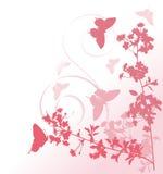 Flores e borboletas cor-de-rosa da árvore de cereja Imagem de Stock