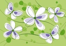 Flores e borboletas no fundo verde Foto de Stock
