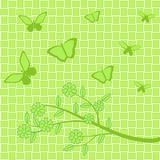 Flores e borboletas verdes no fundo verde Fotos de Stock