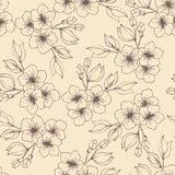 Flores e botões Imagem de Stock Royalty Free