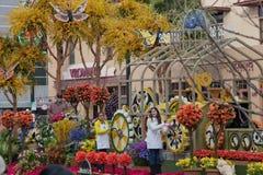 Flores e Butterfiles na parada da bacia de Rosa Fotografia de Stock