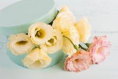 Flores e caixa de presente amarelas do eustoma Fotografia de Stock Royalty Free