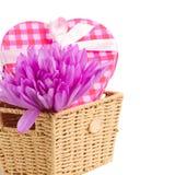 Flores e caixa de presente roxas do açafrão Imagem de Stock