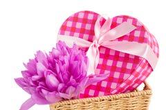 Flores e caixa de presente violetas do açafrão Imagem de Stock Royalty Free