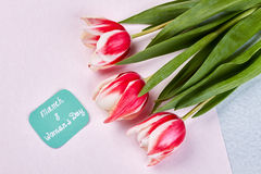 Flores e cartão da mola Imagens de Stock