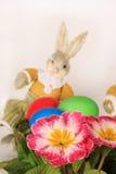 Flores e coelho Fotos de Stock