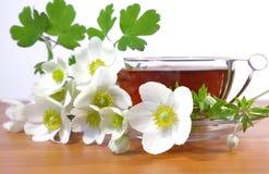 Flores e copo do chá Fotografia de Stock