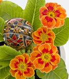 Flores e egs orientais Foto de Stock