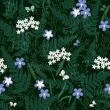 Flores e ervas da floresta sem emenda Fotos de Stock Royalty Free