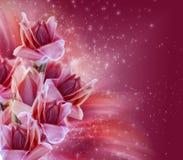 Flores e estrelas tropicais da floresta tropical Imagem de Stock